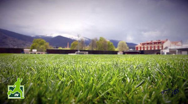 RealSitioCup-Instalaciones-Campo-hierba-natural-1